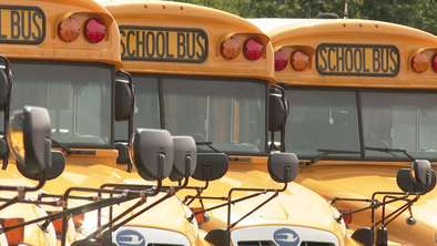 New law makes school bus drivers mandated reporters