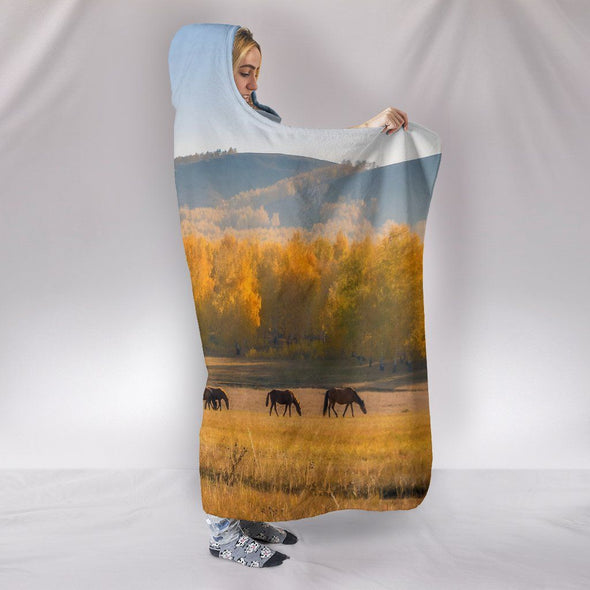 Blankets - Horse In A Field - Hooded Blackets