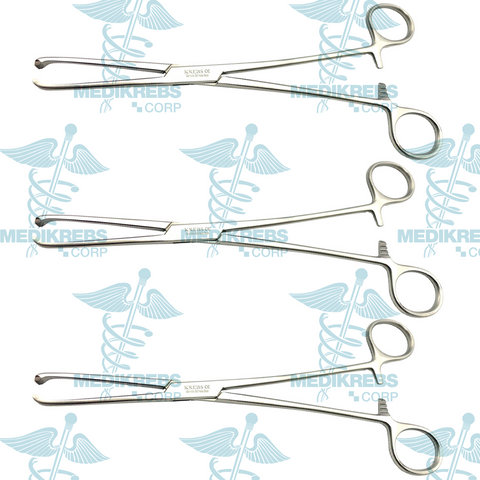 3 Pcs Allis Tissue Forceps 5 x 6 Teeth 19 cm