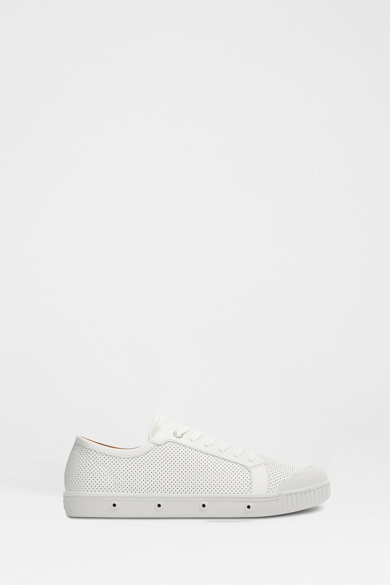 Buy G2 Slim Punch Leather Sneaker from SPRINGCOURT at paya boutique