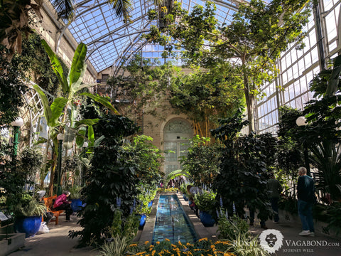 U.S. Botanic Garden grows biomes of flora and light