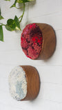 The Puff Collection | Round Teak Frame with Fiber Art in Reds and Pinks