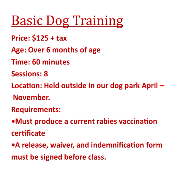 Basic Obedience Training Class
