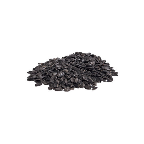 Black Oil Sunflower 40 lb.