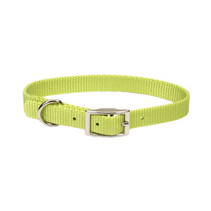"Coastal Nylon Collar 18"" - 3/4"" Lime"