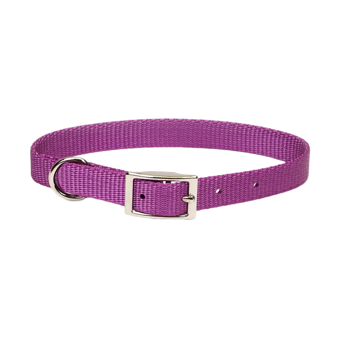 "Coastal Nylon Collar 16"" - 5/8"" Orchid"