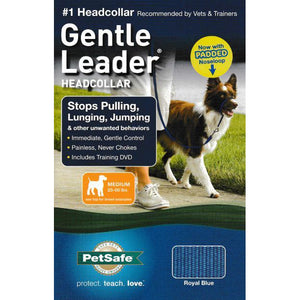 Premier Gentle Leader Medium Royal Blue
