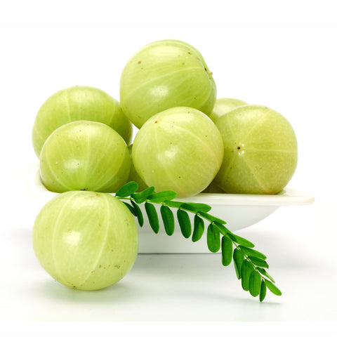 Amla Fruit Powder  Emblica officinalis