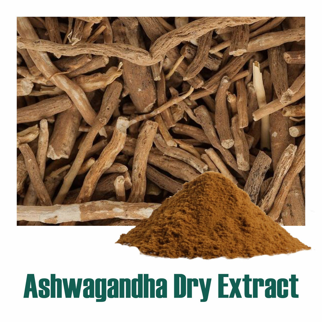 Ashwagandha dry Extract - 2.5% Total Withanolides by Gravimetry