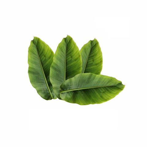 Banaba Leaves Powder  Lagerstroemia speciosa