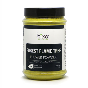 Forest flame tree Flower Powder Butea monosperma