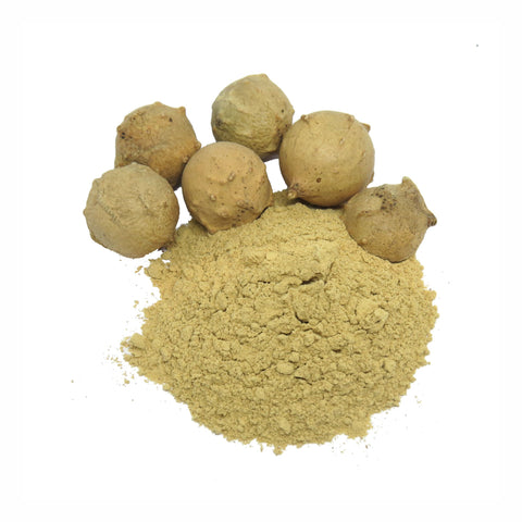 Galnuts Galls Powder  Quercus infectoria