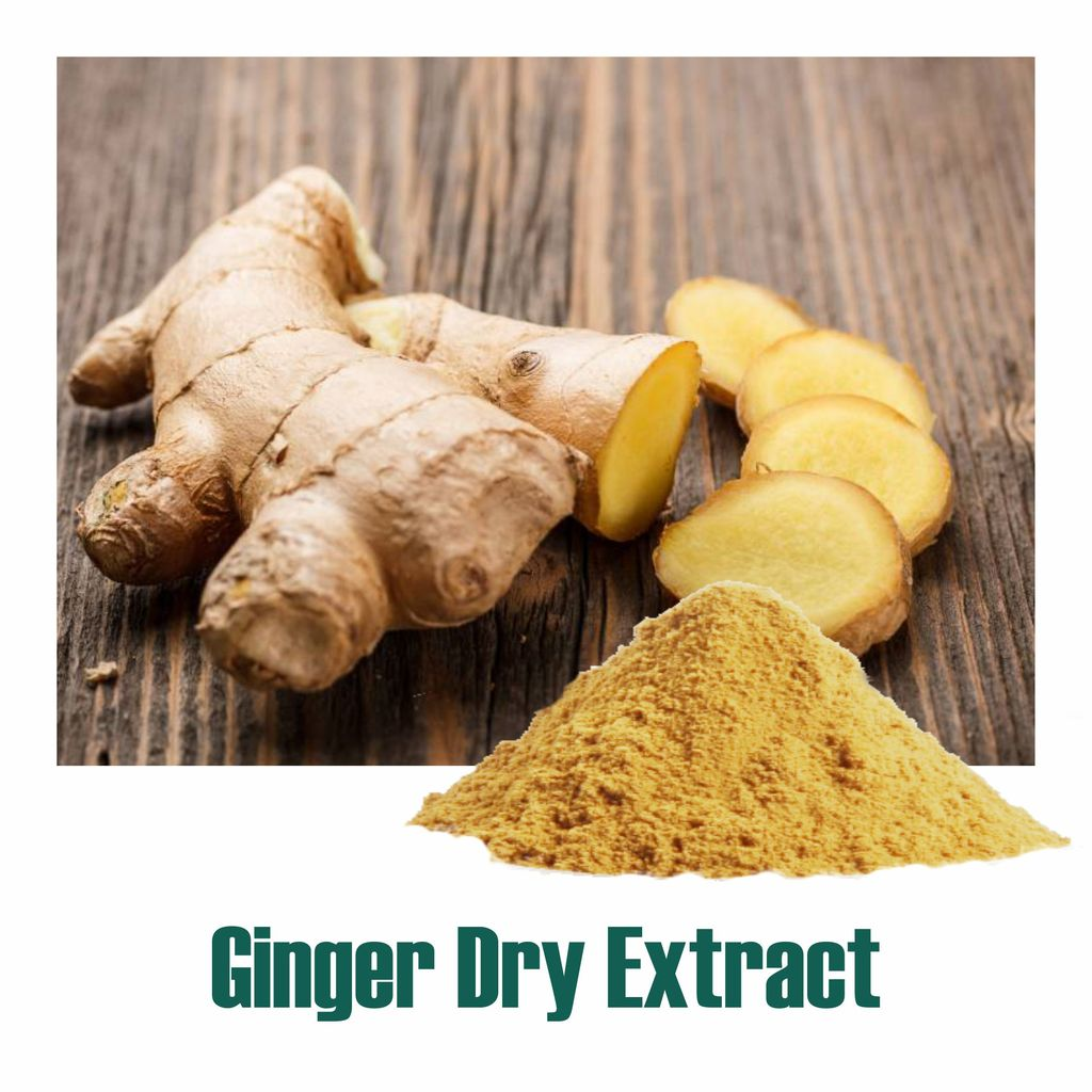 Ginger (Zingiber officinale) Dry Extract - 5% Gingerols by UV