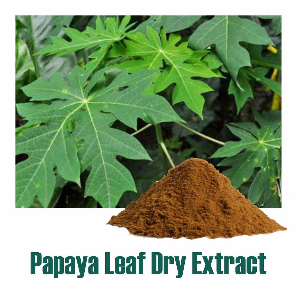 Papaya leaf dry Extract  - 40% Saponnins by Gravimetry