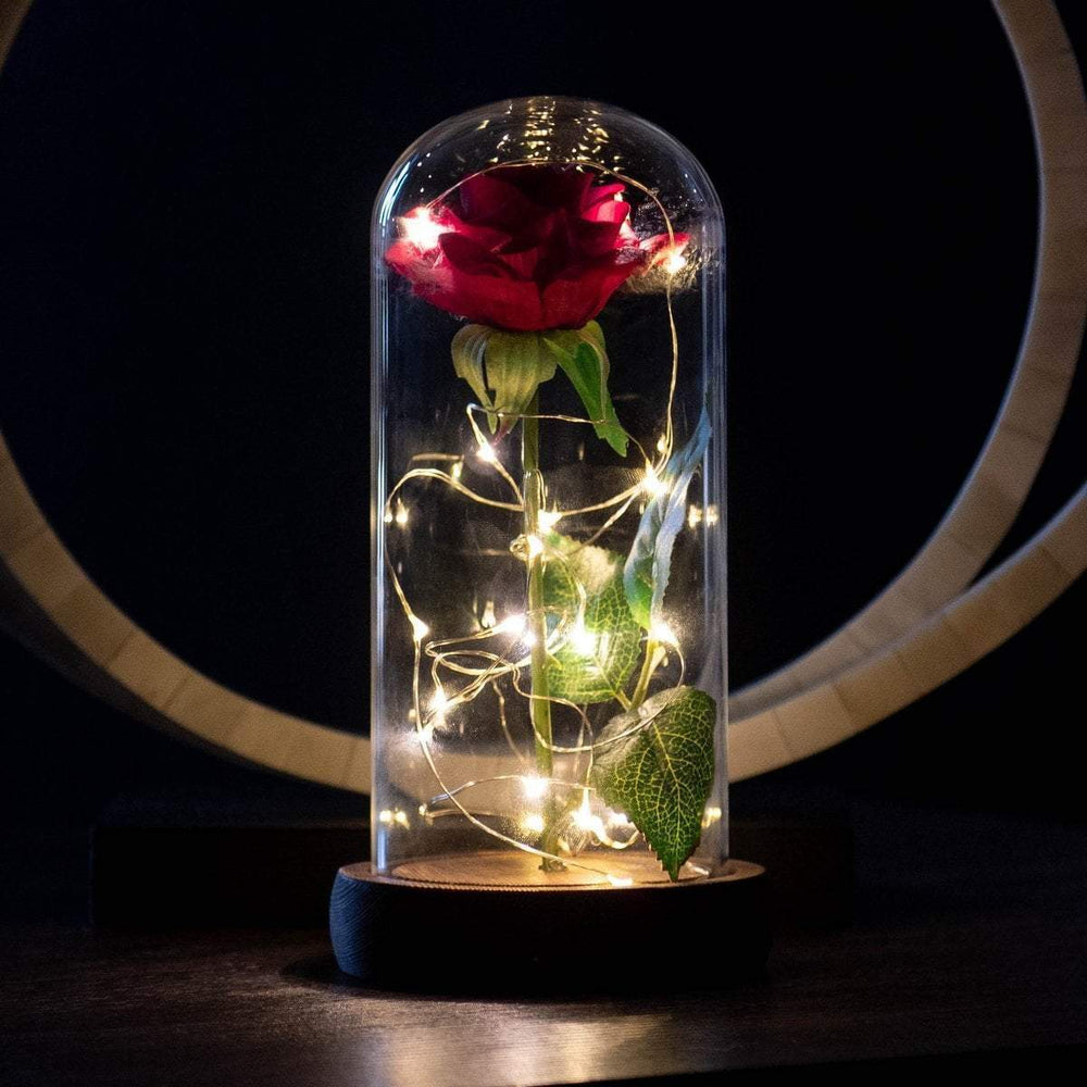 Rose Enchanted with Lights