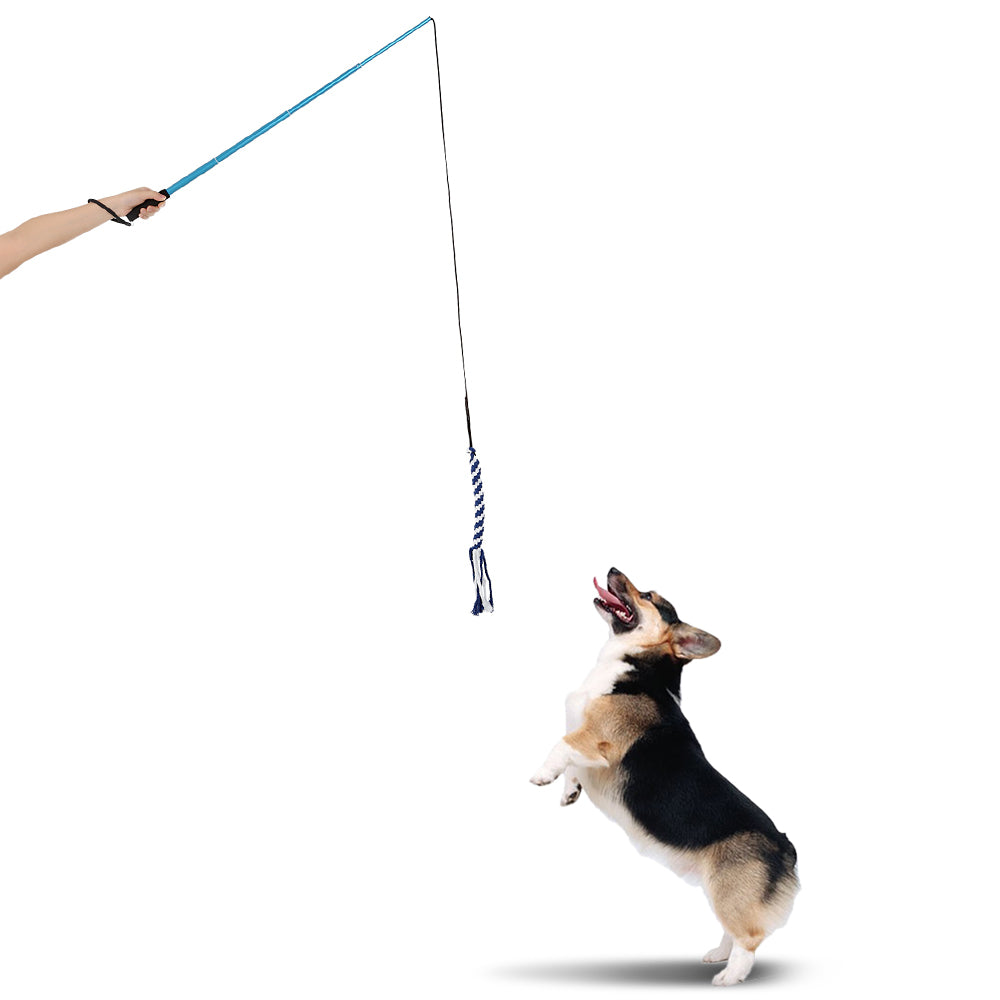 Training Exercise Rope Toy