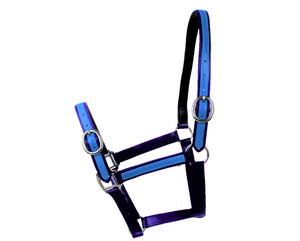 Navy & Aqua Blue PVC Head Collar
