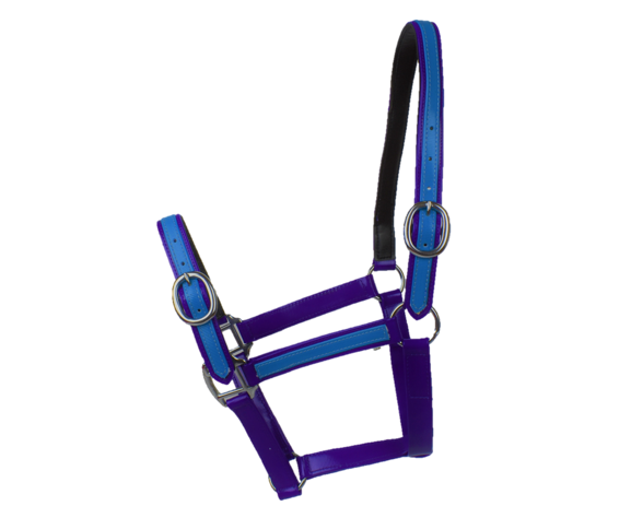Purple & Aqua Blue PVC Head Collar
