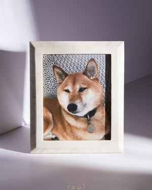 White Bone Frame