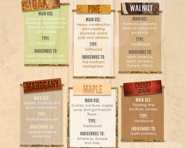 types of wood infographic