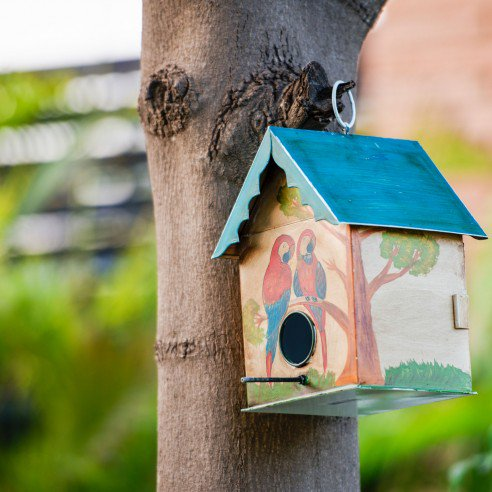 Humming Bird House Blue