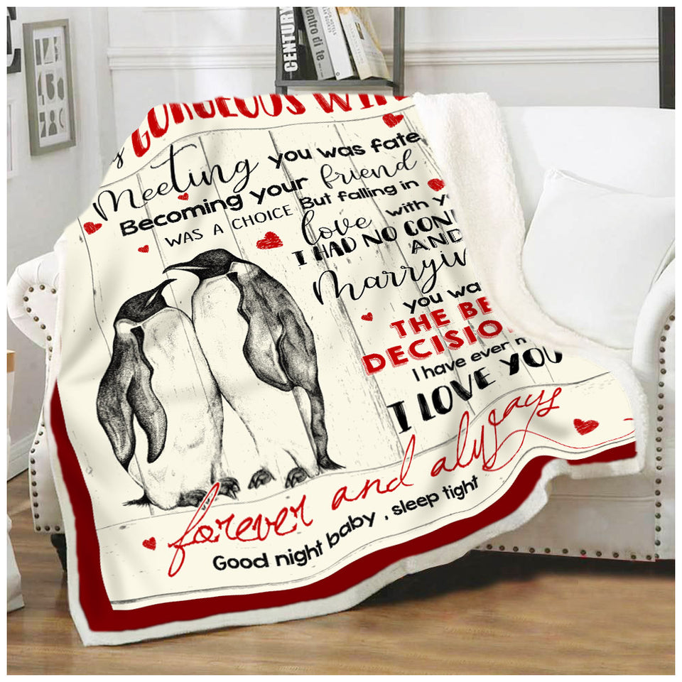 BLANKET PENGUIN To my Wife Meeting you was fate