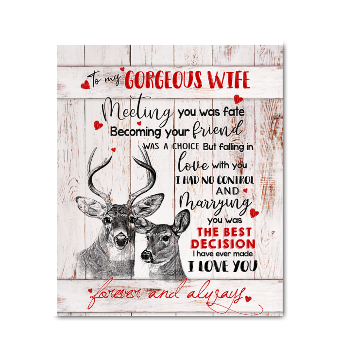CANVAS - DEER - To my Wife - Meeting you was fate
