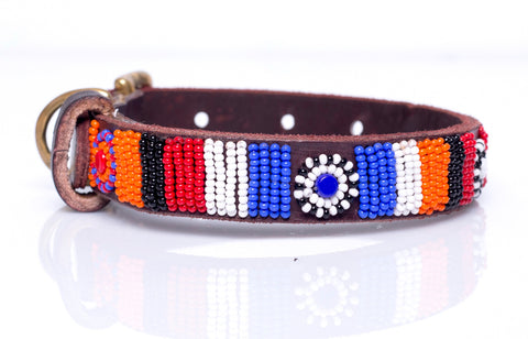 Rastar dog collar