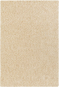Artistic Weavers Sally Maise ALY6052 Area Rug