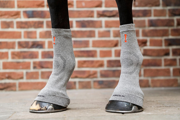 Circulation Hoof Socks