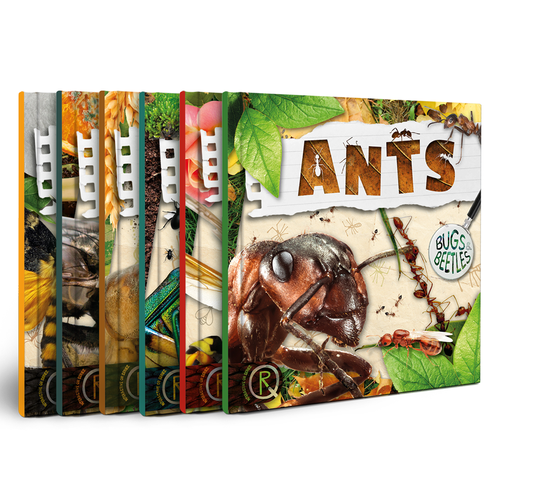 Bugs and Beetles, BookLife Publishing, UK, Children's Books