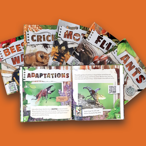 Bugs and Beetles BookLife Publishing UK, Childrens Books