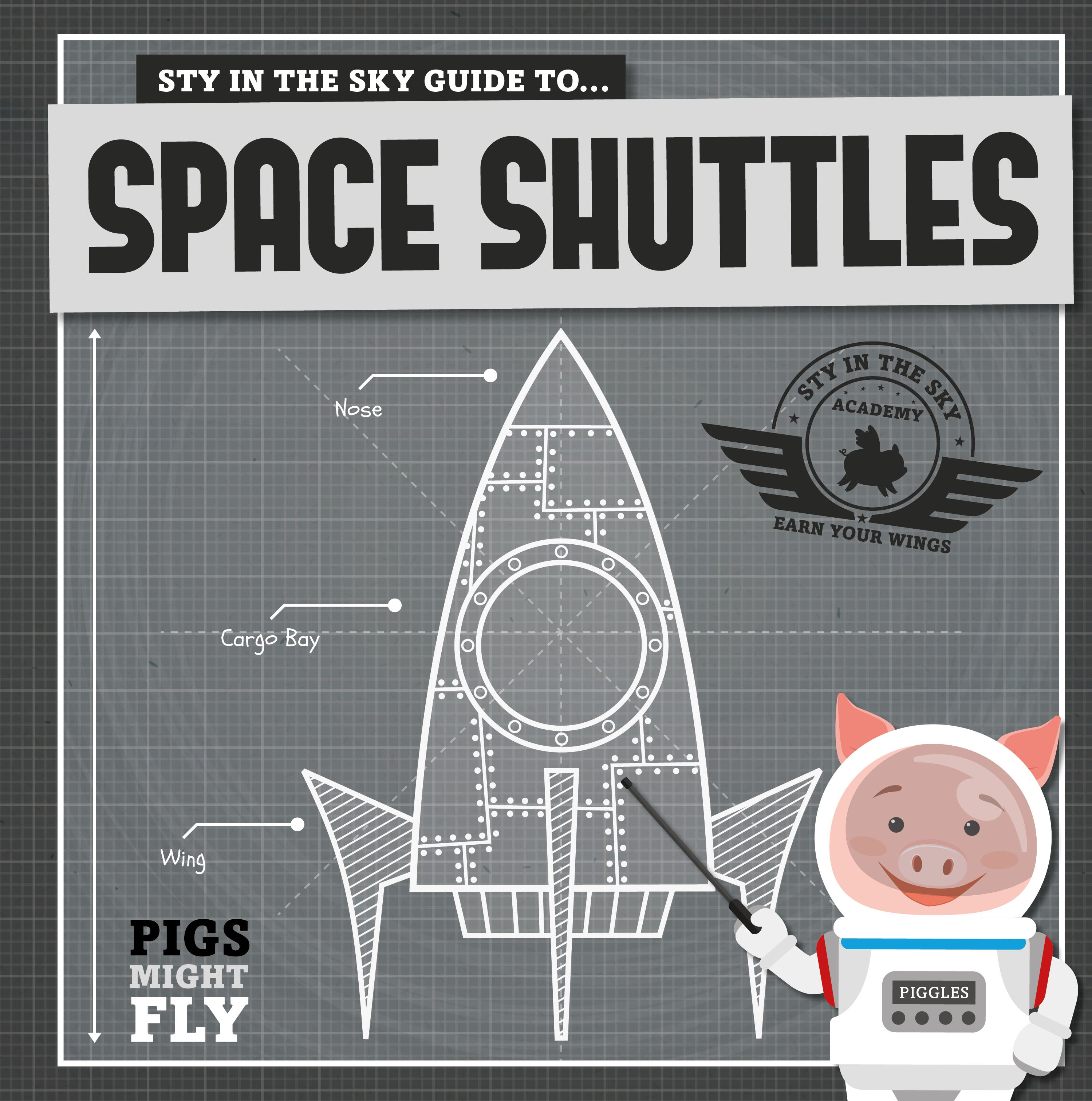 Pigs Might Fly | Space Shuttles | 50th Anniversary of the Moon Landing | BookLife Publishing UK