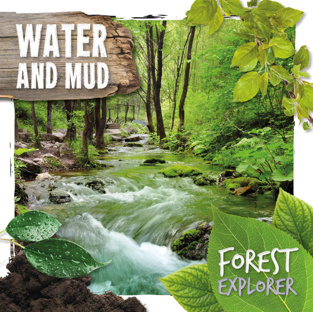 Forest Explorer: Water and Mud | Children's Books | Non-Fiction Books | BookLife Publishing Ltd