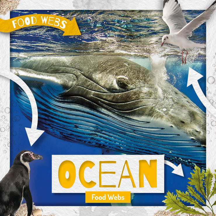 Food Webs: Ocean Food Webs | Children's Books | Non-Fiction Books | BookLife Publishing Ltd