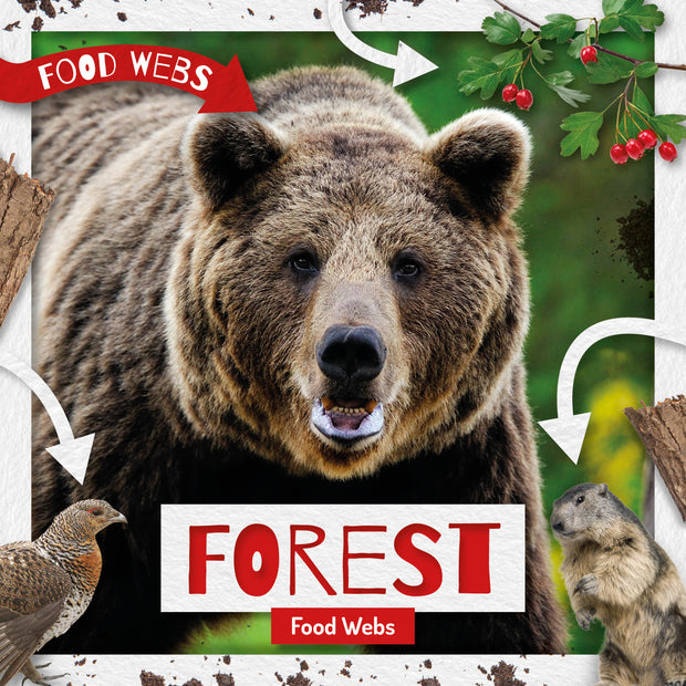 Food Webs: Forest Food Webs | Children's Books | Non-Fiction Books | BookLife Publishing Ltd