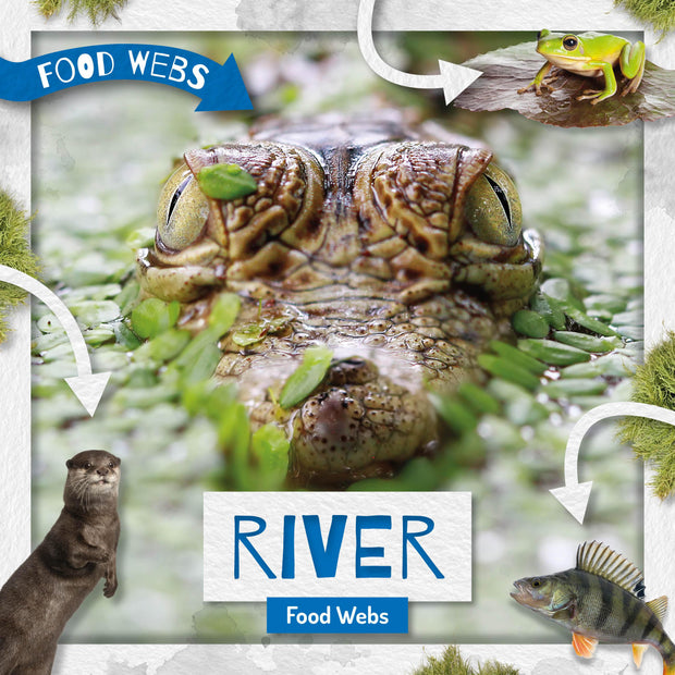 Food Webs: River Food Webs | Children's Books | Non-Fiction Books | BookLife Publishing Ltd