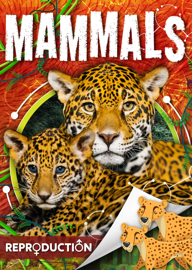Reproduction: Mammals | Children's Books | Non-Fiction Books | BookLife Publishing Ltd