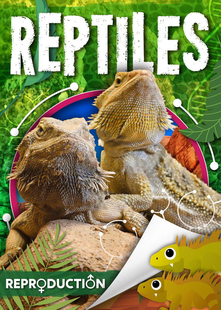 Reproduction: Reptiles | Children's Books | Non-Fiction Books | BookLife Publishing Ltd