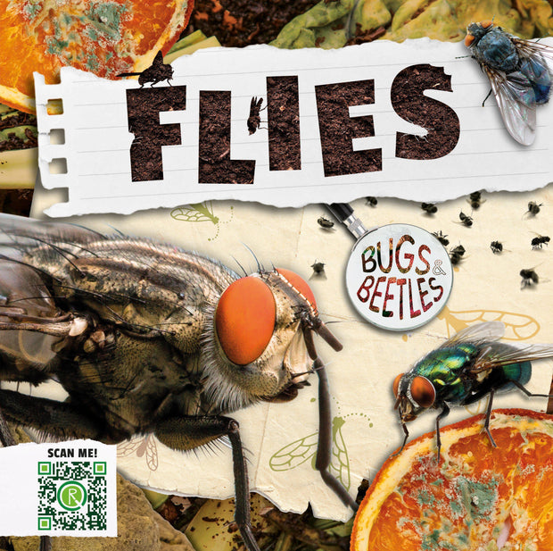 Bugs and Beetles: Flies | Children's Books | Non-Fiction Books | BookLife Publishing Ltd