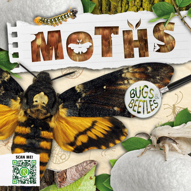 Bugs and Beetles: Moths | Children's Books | Non-Fiction Books | BookLife Publishing Ltd