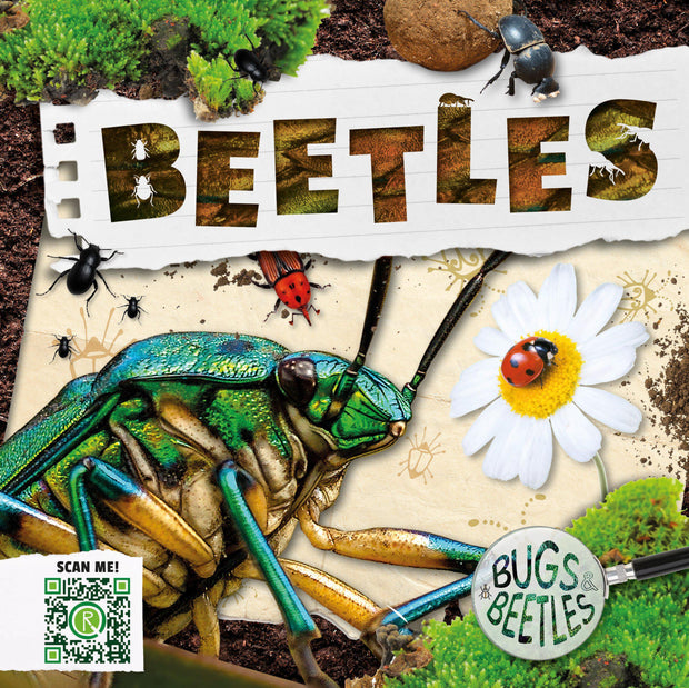Bugs and Beetles: Beetles | Children's Books | Non-Fiction Books | BookLife Publishing Ltd