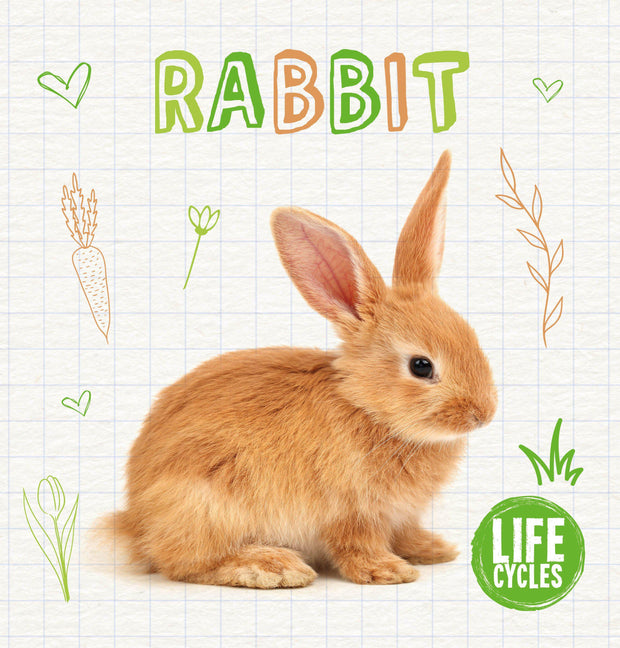 Life Cycles: Rabbit | Children's Books | Non-Fiction Books | BookLife Publishing Ltd