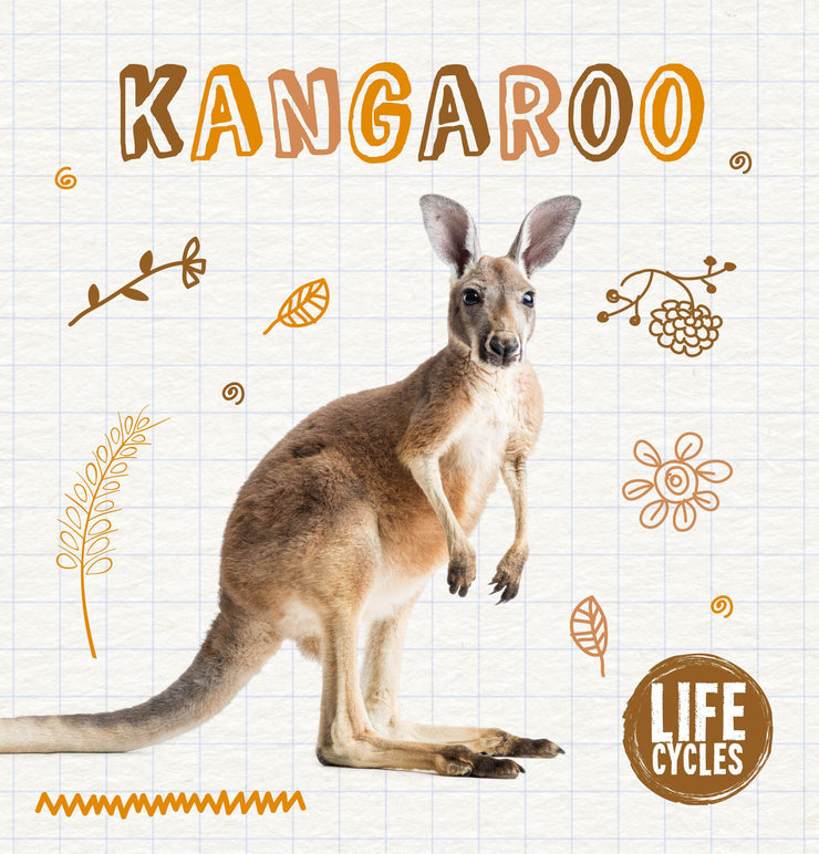 Life Cycles: Kangaroo | Children's Books | Non-Fiction Books | BookLife Publishing Ltd
