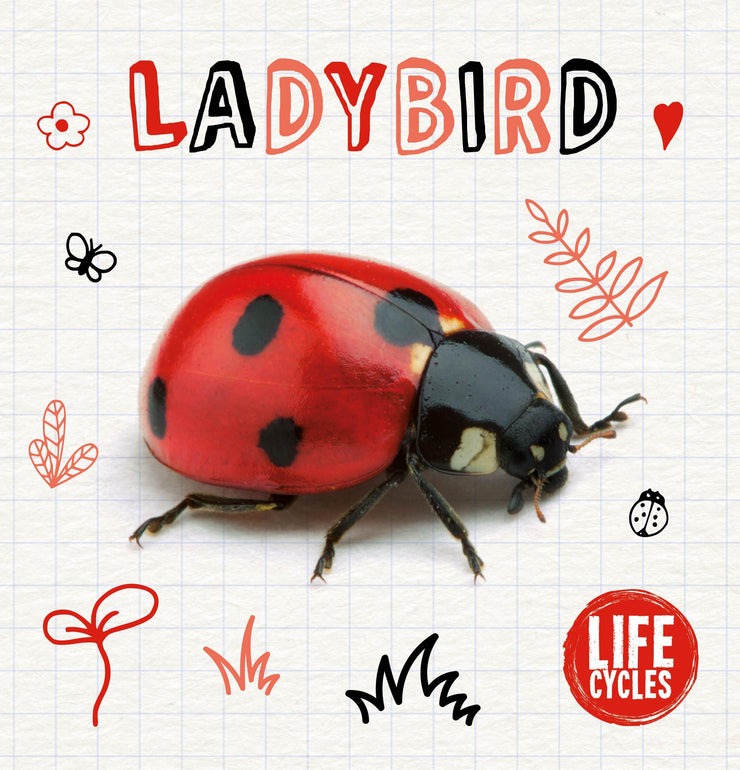 Life Cycles: Ladybird | Children's Books | Non-Fiction Books | BookLife Publishing Ltd