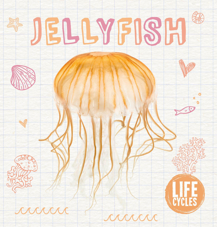 Life Cycles: Jellyfish | Children's Books | Non-Fiction Books | BookLife Publishing Ltd