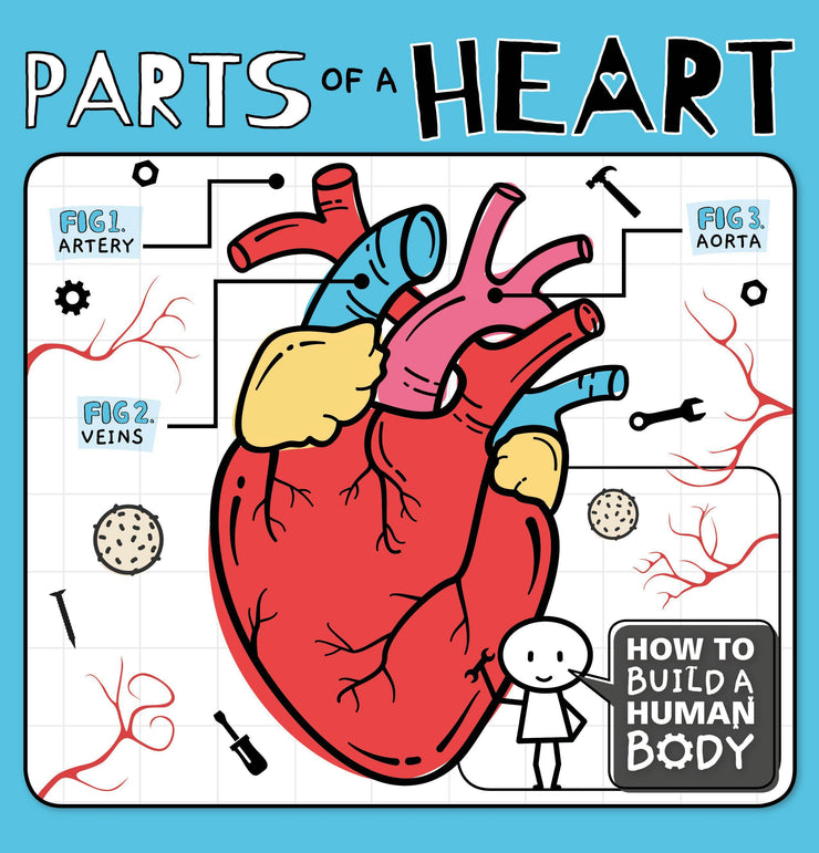 How to Build a Human Body: Parts of a Heart | Children's Books | Non-Fiction Books | BookLife Publishing Ltd