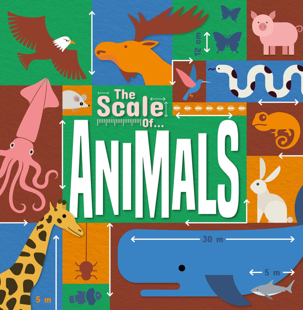 The Scale Of…: Animals | Children's Books | Non-Fiction Books | BookLife Publishing Ltd