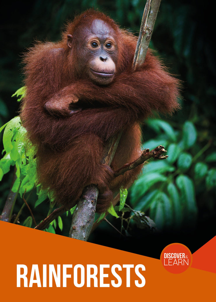 Discover and Learn: Rainforests