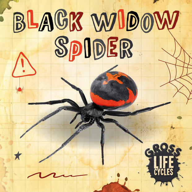 Gross Life Cycles: Black Widow Spider